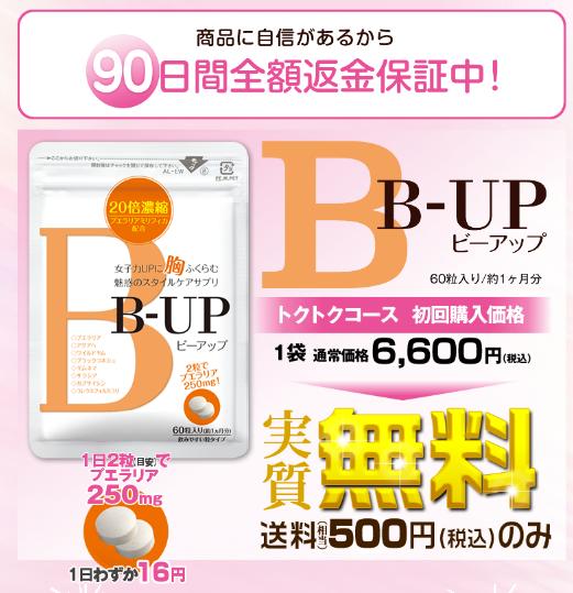 b-up3